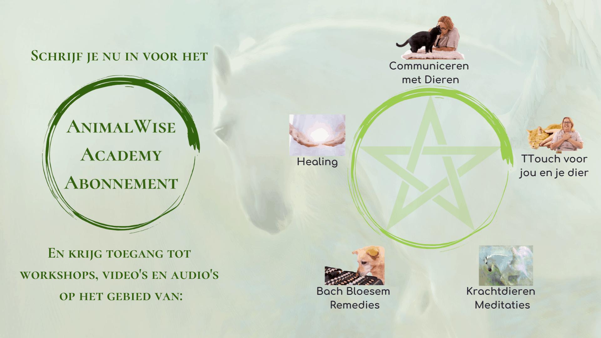 Het AnimalWise Academy Abonnement (pc)